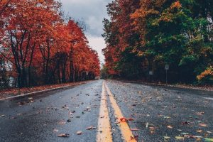 Fall Hikes with Your Family, clarkston cleaning services