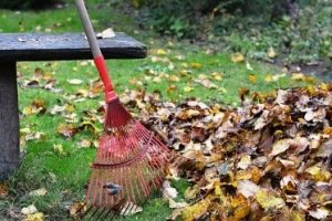 fall yard and garden clean up, clarkston cleaning services